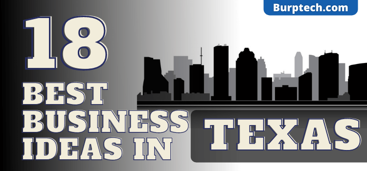 18 successful business ideas in texas
