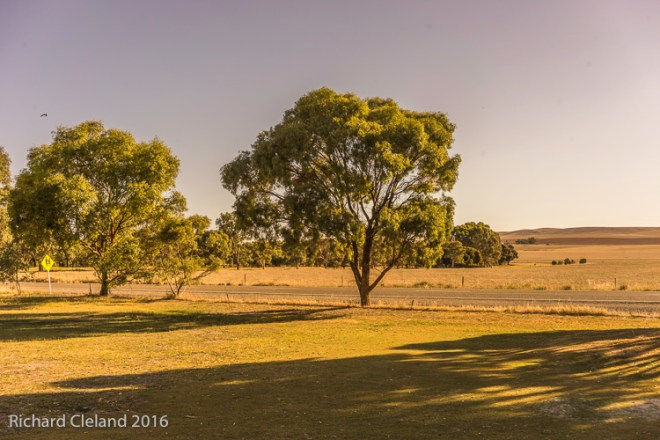 Autumn View - Burra Golf Club