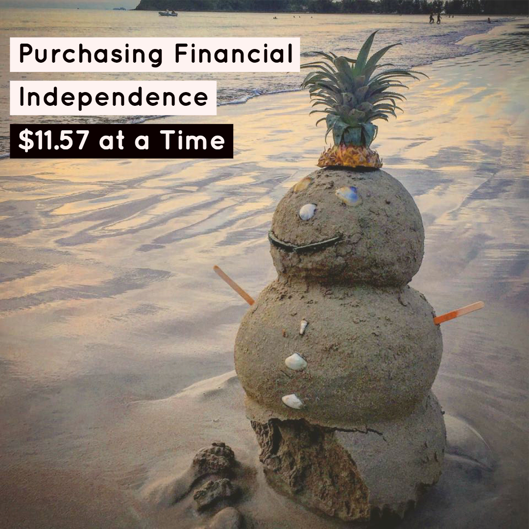 https://burritobowldiaries.com/2018/09/29/purchasing-financial-independence/