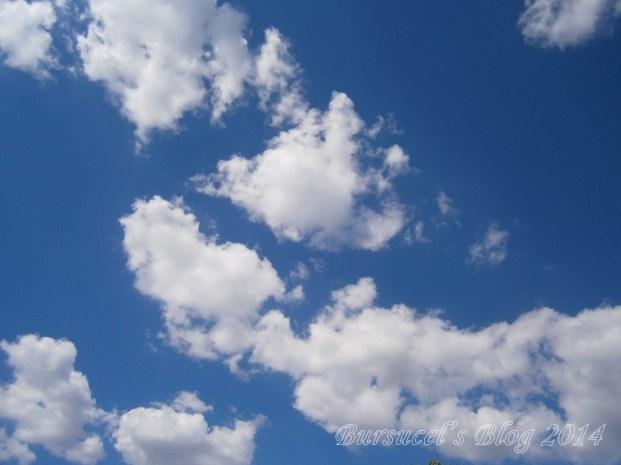 cu capul în nori