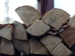 Log Close ups