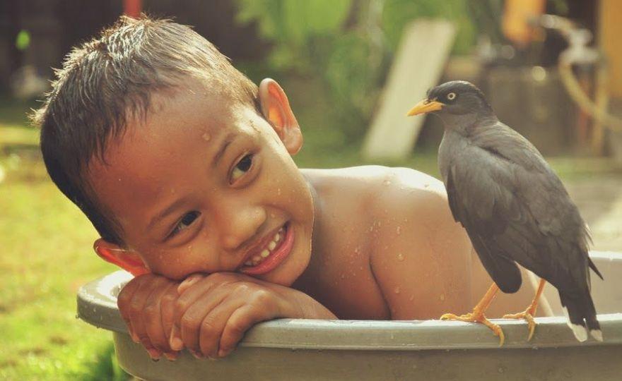 Kisah Nyata Persahabatan Seorang Anak dengan Burung Jalak