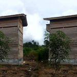 Desain Rumah Walet Kecil dari Kayu