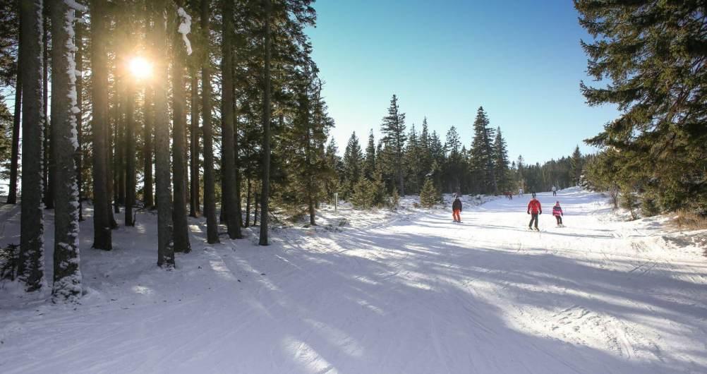 Transport To The Ski Slopes Wynajem Busów Zakopane