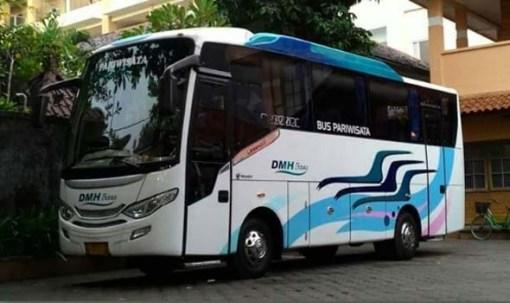 Bus Pariwisata Medium 31 seat