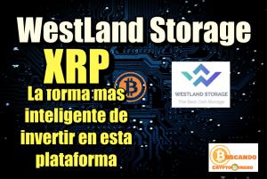 Lee más sobre el artículo WestLand Storage porque XRP es la mejor opcion para invertir con ellos