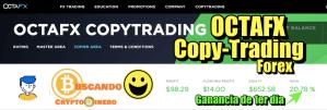 Lee más sobre el artículo OctaFX  CopyTrading Forex