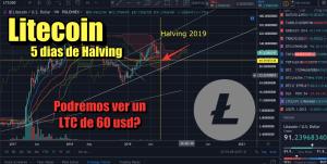 Lee más sobre el artículo Litecoin Halving en 5 dias, podria bajar hasta 60 usd?