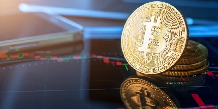 En este momento estás viendo CEO de Pantera: para finales del 2019 el precio de bitcoin podría llegar a USD 42.000