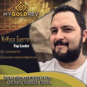 Lee más sobre el artículo MyGoldRev me llego esta imagen de el CEO