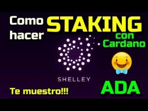 Lee más sobre el artículo Como hacer STAKING de Cardano ADA en Shelley???