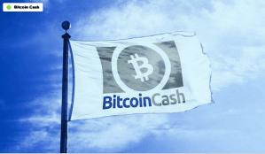 Lee más sobre el artículo Bitcoin Cash se cae cuando Hard Fork comienza a funcionar