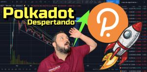 Lee más sobre el artículo Polkadot DESPERTANDO !!! + 12 monedas 😱😱