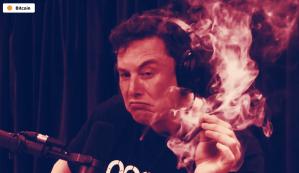 Lee más sobre el artículo Ahora puedes pagar a Elon Musk en Bitcoin
