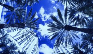 Lee más sobre el artículo El alcalde de Miami contrata el primer CTO de la ciudad en Fintech, Crypto Push