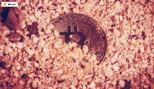 Lee más sobre el artículo La policía alemana 'incauta' $ 63 millones en Bitcoin, no tiene contraseña