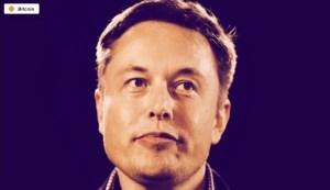 Lee más sobre el artículo Elon Musk no tendrá 'ningún papel' en el Consejo de Minería de Bitcoin