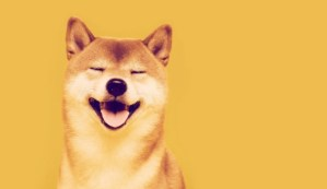 Lee más sobre el artículo Shiba Inu sube un 385% en una semana, se convierte en la 12ª criptomoneda más grande