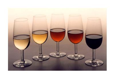 Ruta de vinos