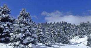 ruta por la Sierra de Grazalema
