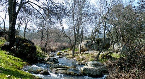 Los Montes de Toledo. La Puerta de Cabañeros - Buscarutas.com