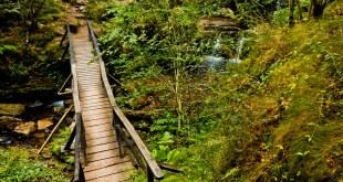 Ruta hasta las Cascadas de Lamiña