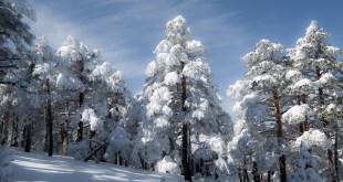 Valsain nevado
