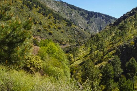 Los valles Hurdanos