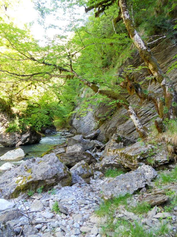 Río Irues