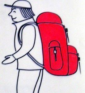 bagaje profesional