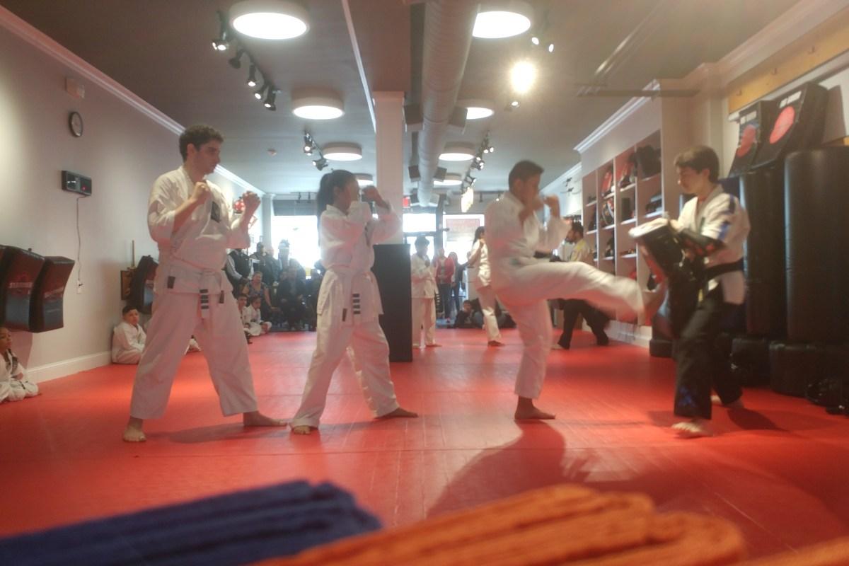 karate kicks on a pad