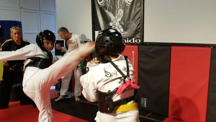 karate kick to the head