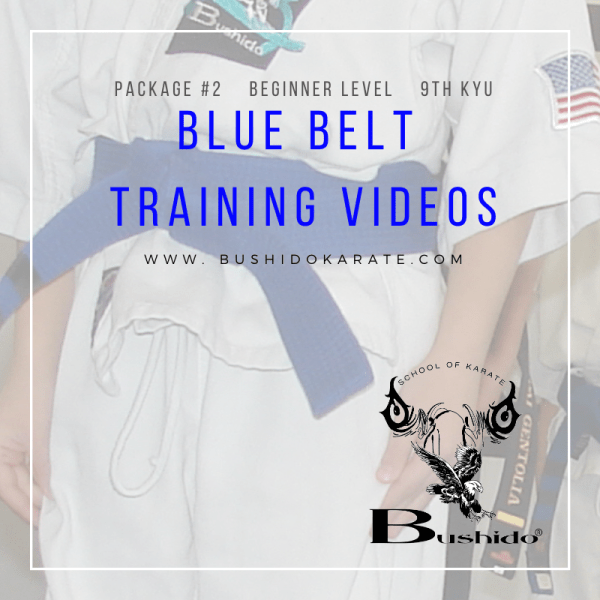 blue belt video cover