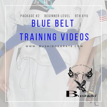 blue belt video cover