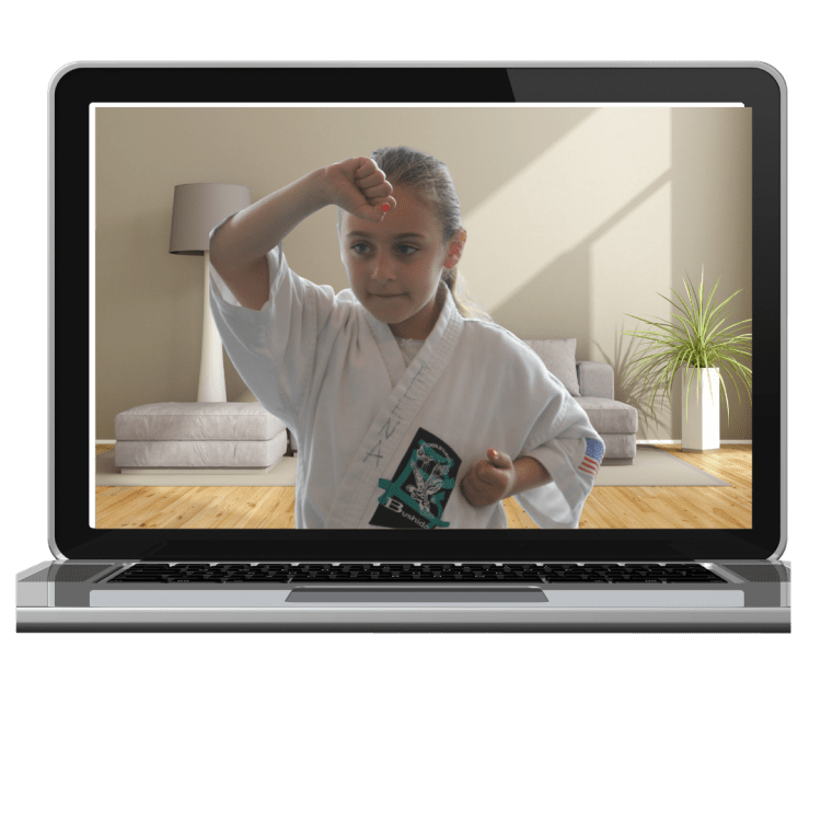 private karate lesson online