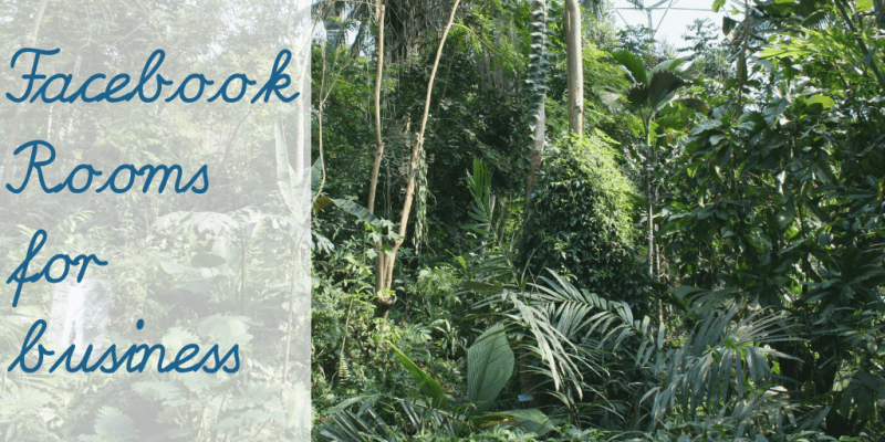 "a tropical forest area. Text reads ""Facebook Rooms for business"""