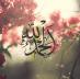 tumblr_n2vahiffVP1qapk2qo1_500