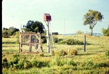 solar-powered-fence-tif