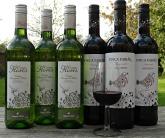 Terrific value organic wine case