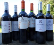 Winter Warming Spicy Spanish Red Wines