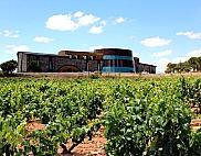 Christmas Wine Tasting: stunning Ribera del Duero: Dominio de Cair