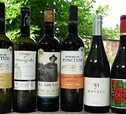 Off the Beaten Track Spain is a great discovery case of quality, interesting wines from lesser known Spain. From family producers, many have won awards, four are organic. This case offer is stunning value from Bush Vines.