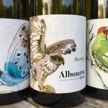 Celebrate English Wine Week at The Anchor Bleu, Bosham at a free Tasting on 30 & 31 May. Fantastic range of #EnglishWines from Sussex, Kent & Wiltshire available by the glass from 30 May through to 4 June 2019.