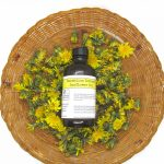 dandelion infused sunflower oil