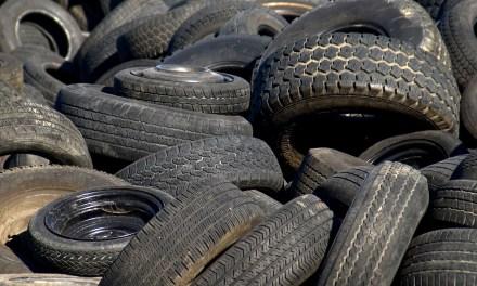 "Exploring ""Green"" Alternatives for Tires"