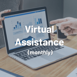 Virtual Assistant – Level 3 (Monthly)