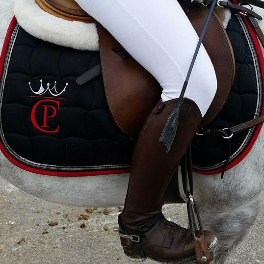 cheval pro de decathlon a la boutique