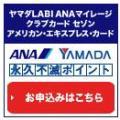 2ヤマダLABIカード