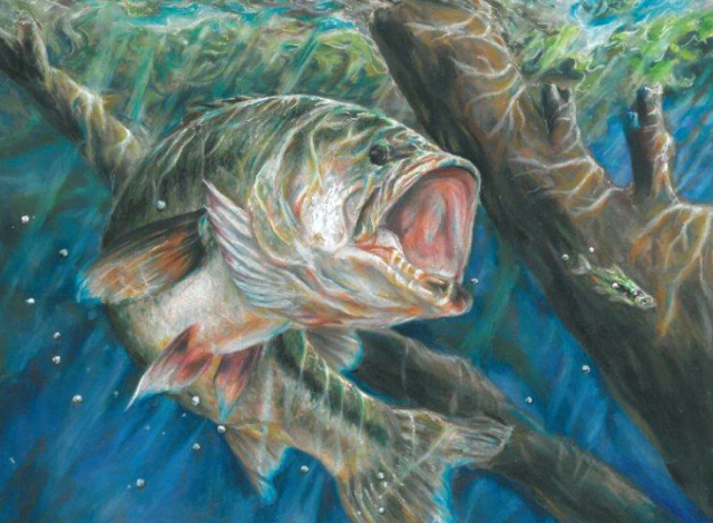 【バス釣り】【ミノーで釣る方法】種類、選び方、人気おすすめ【ランキング】評価・評判・インプレ