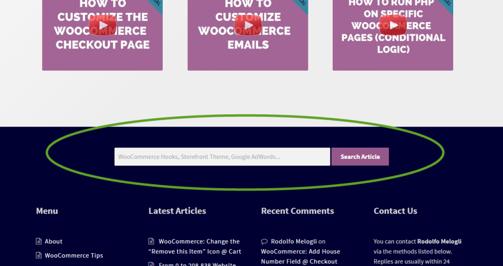 Business Bloomer's custom search bar in the footer